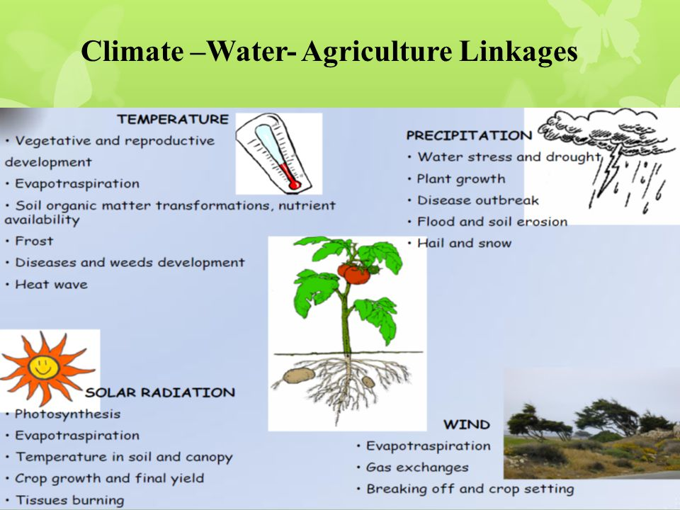 Climate –Water- Agriculture Linkages