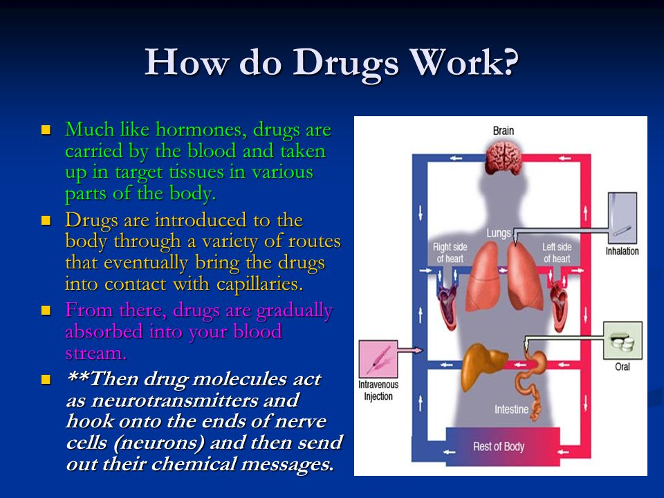 How do Drugs Work Much like hormones, drugs are carried by the blood and taken up in target tissues in various parts of the body.