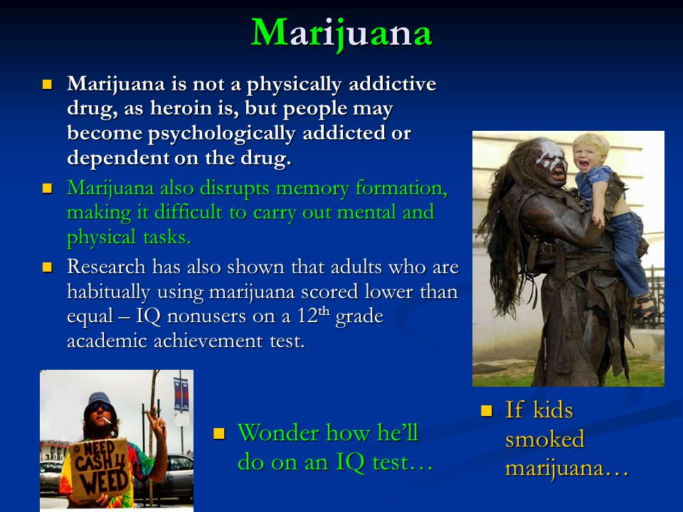 Marijuana If kids smoked marijuana… Wonder how he'll do on an IQ test…