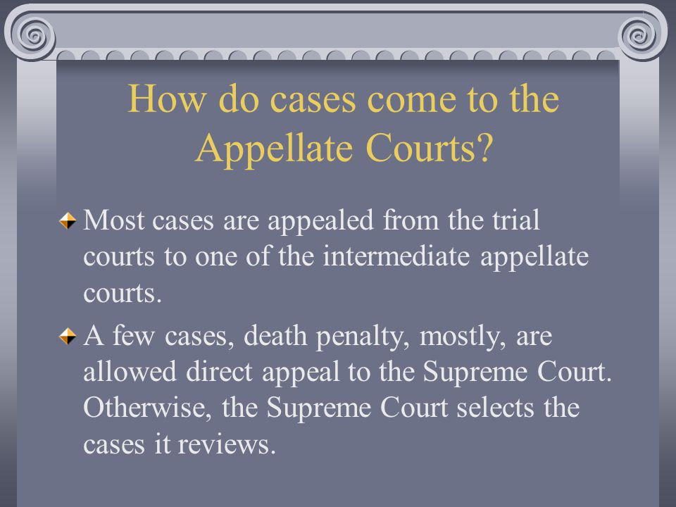 How do cases come to the Appellate Courts