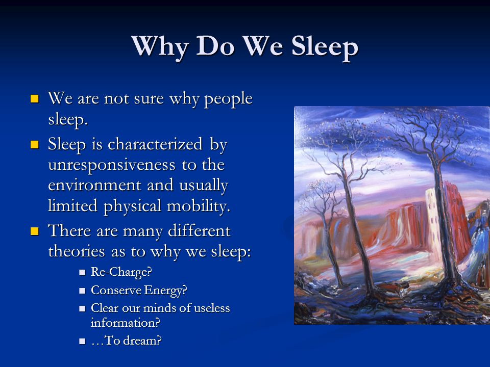 Why Do We Sleep We are not sure why people sleep.
