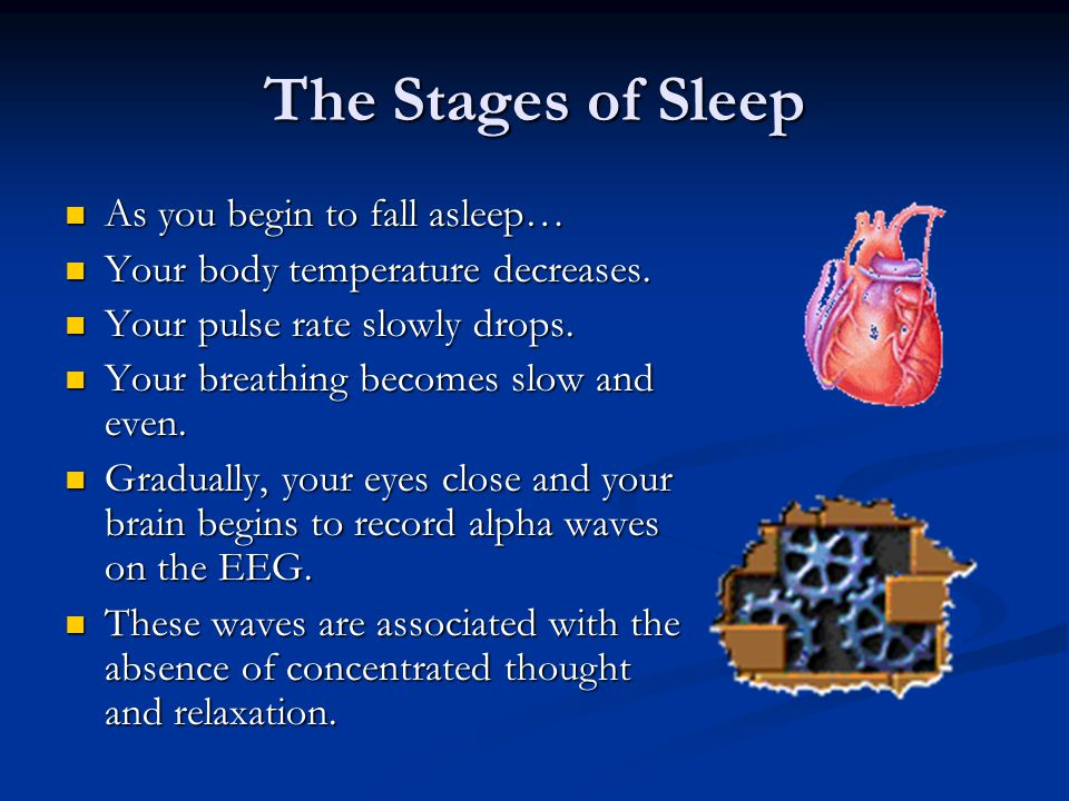 The Stages of Sleep As you begin to fall asleep…