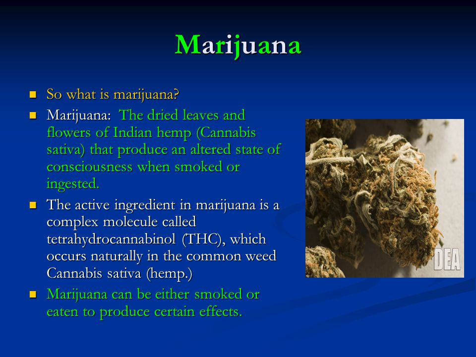 Marijuana So what is marijuana