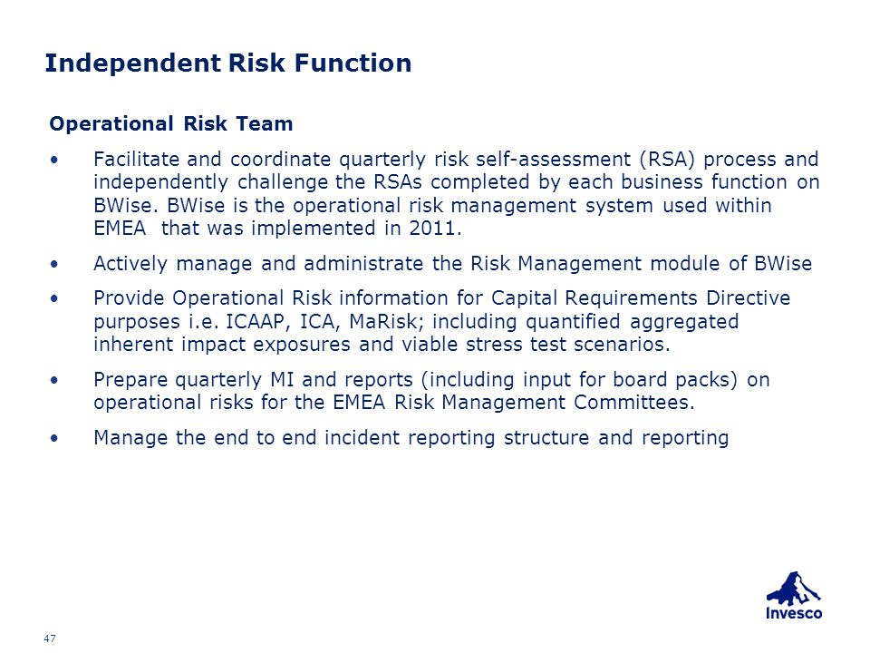 Independent Risk Function