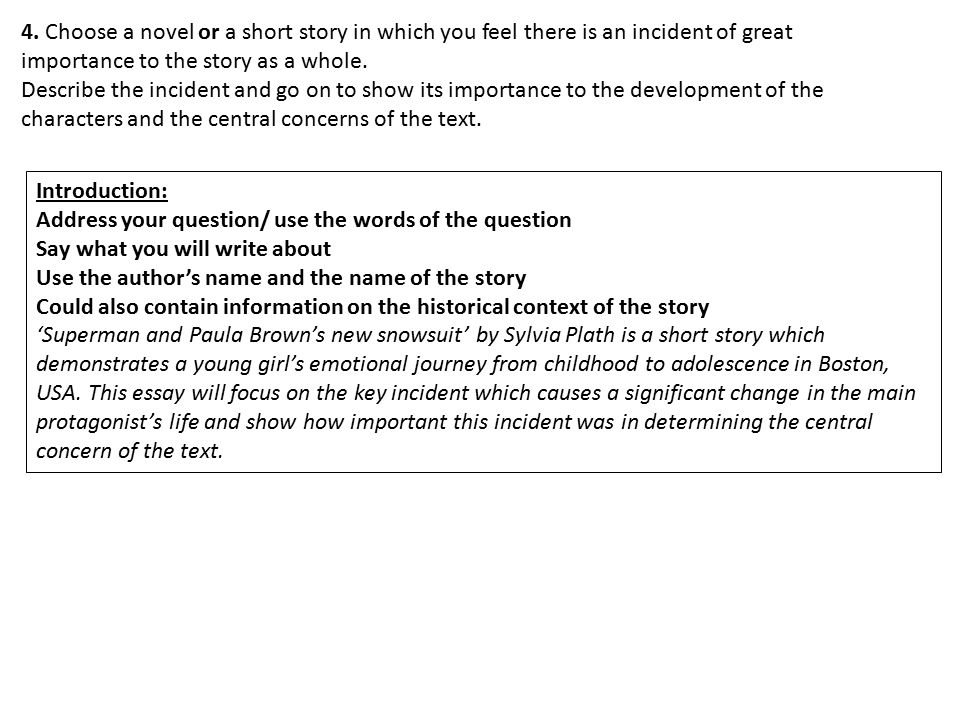 4. Choose a novel or a short story in which you feel there is an incident of great
