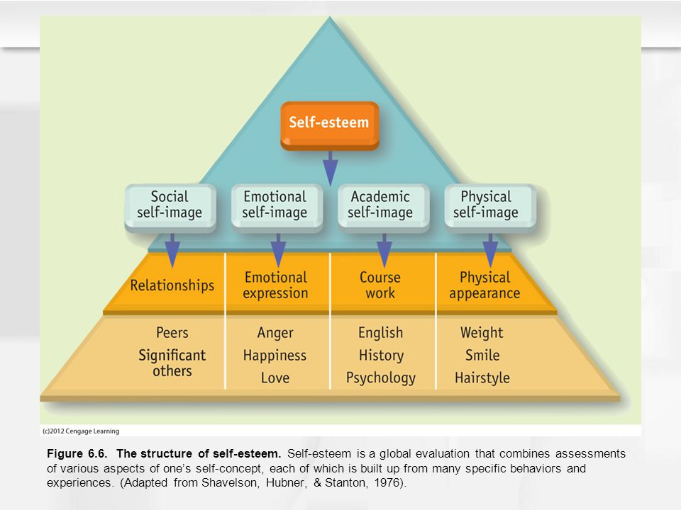 Figure 6. 6. The structure of self-esteem
