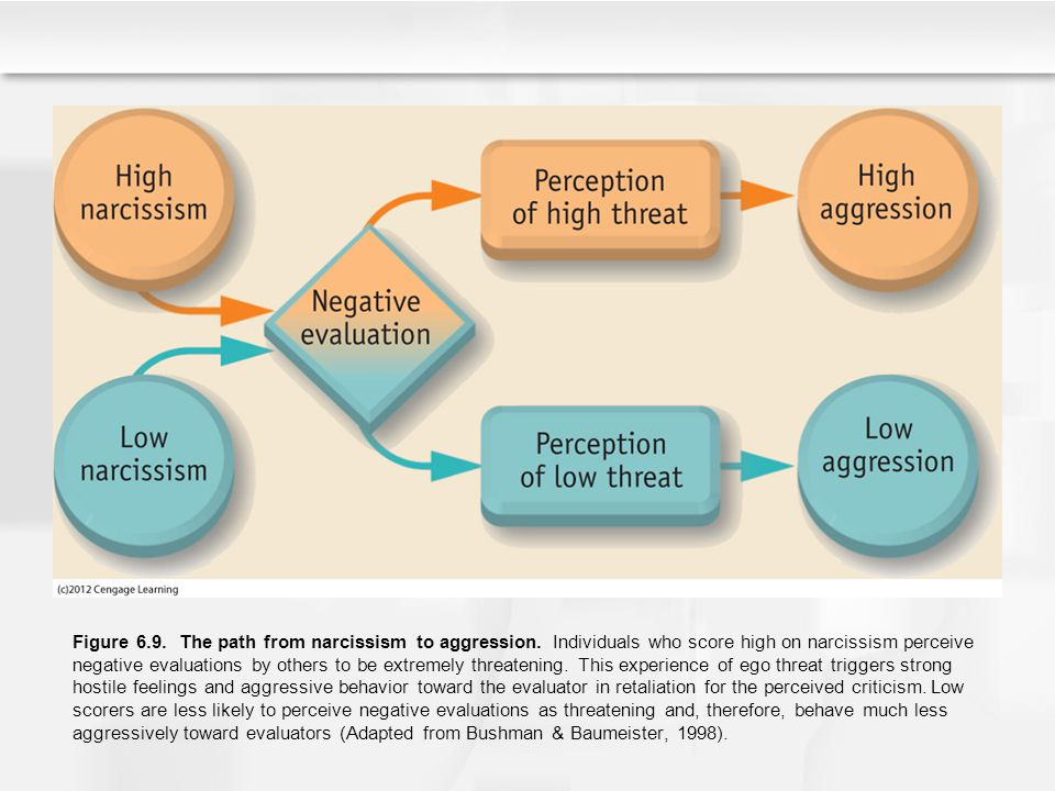 Figure 6. 9. The path from narcissism to aggression