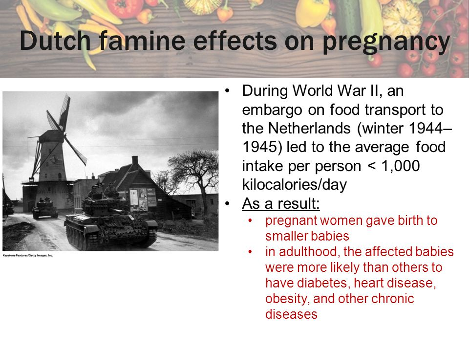 Dutch famine effects on pregnancy