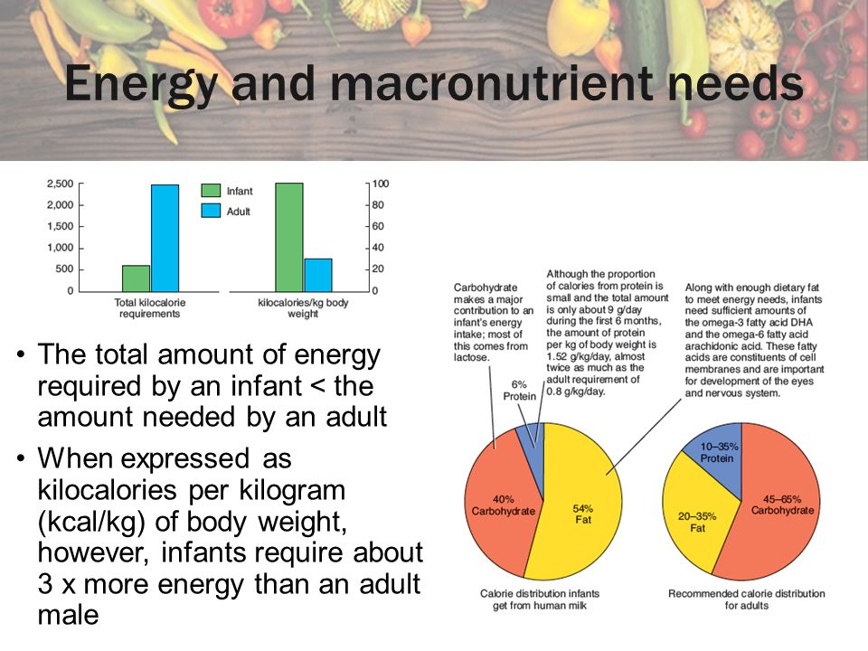 Energy and macronutrient needs