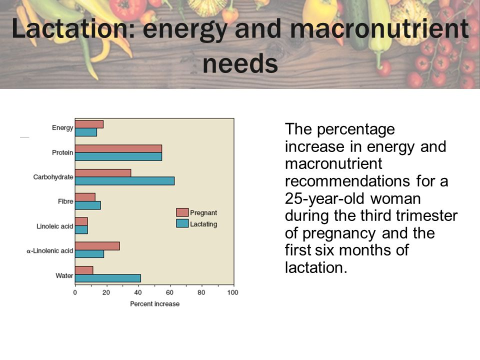 Lactation: energy and macronutrient needs