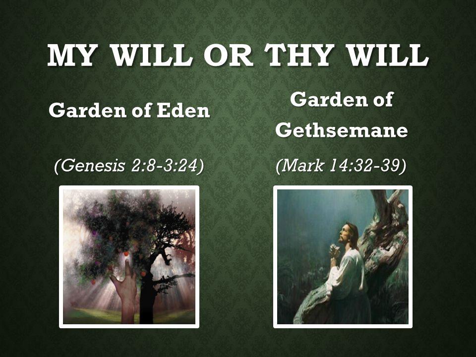 My Will or Thy Will Garden of Gethsemane Garden of Eden