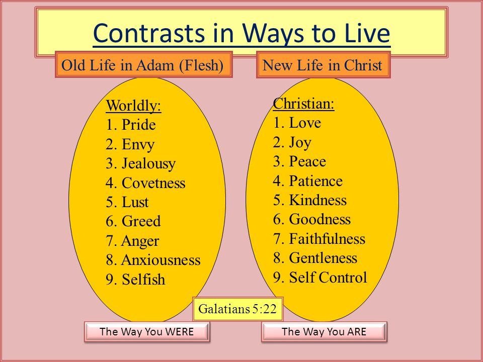 Contrasts in Ways to Live