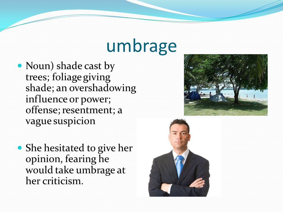 umbrage Noun) shade cast by trees; foliage giving shade; an overshadowing influence or power; offense; resentment; a vague suspicion.