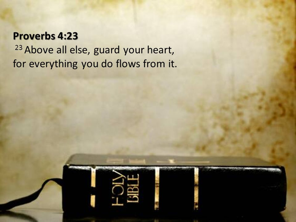 Proverbs 4:23 23 Above all else, guard your heart, for everything you do flows from it.