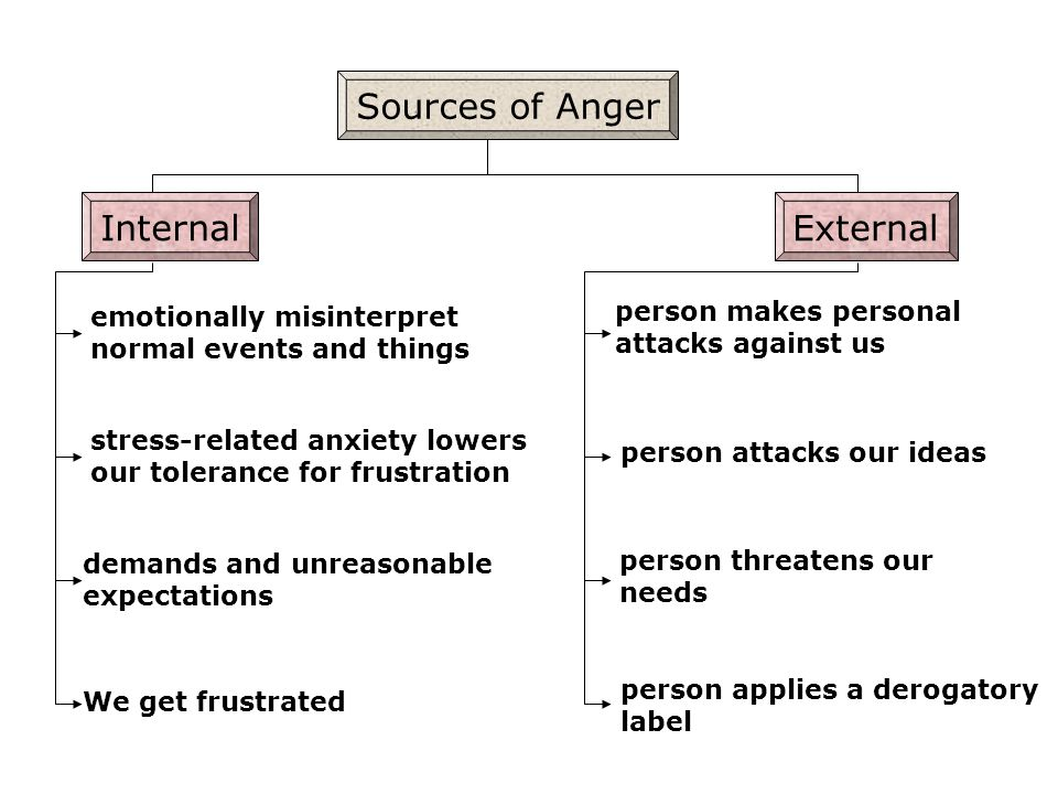 Sources of Anger Internal External person makes personal