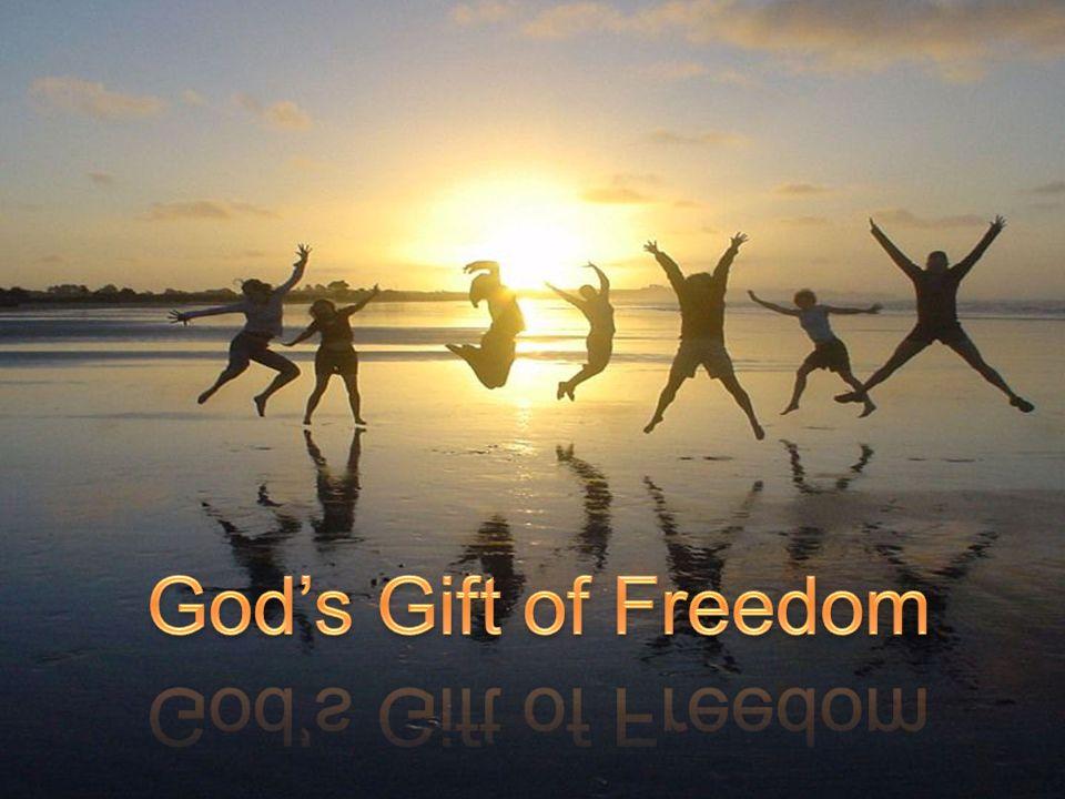 God's Gift of Freedom