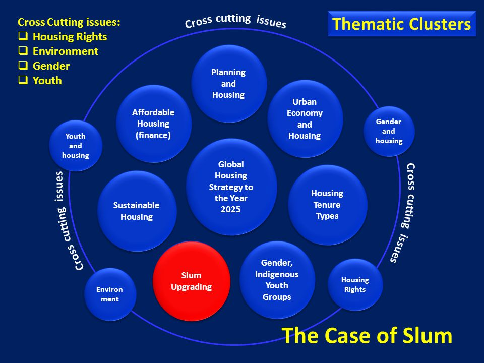 The Case of Slum Thematic Clusters cutting Cross Cutting issues:
