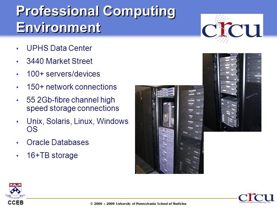 Professional Computing Environment