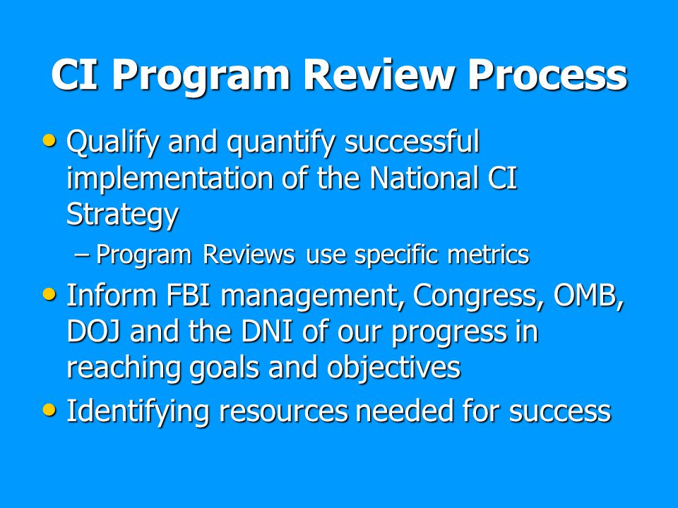 CI Program Review Process