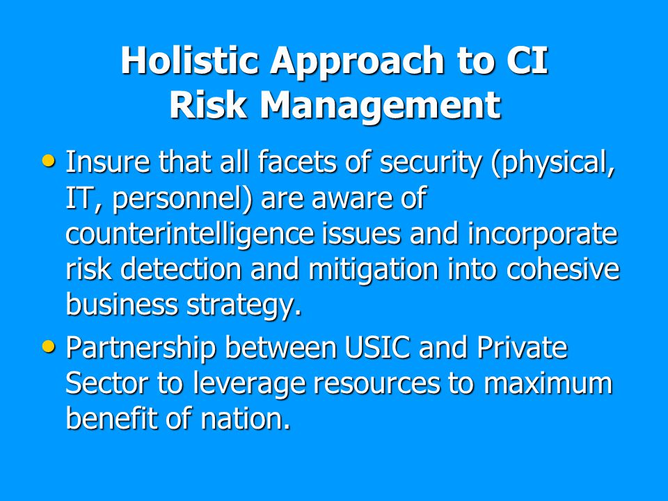 Holistic Approach to CI Risk Management