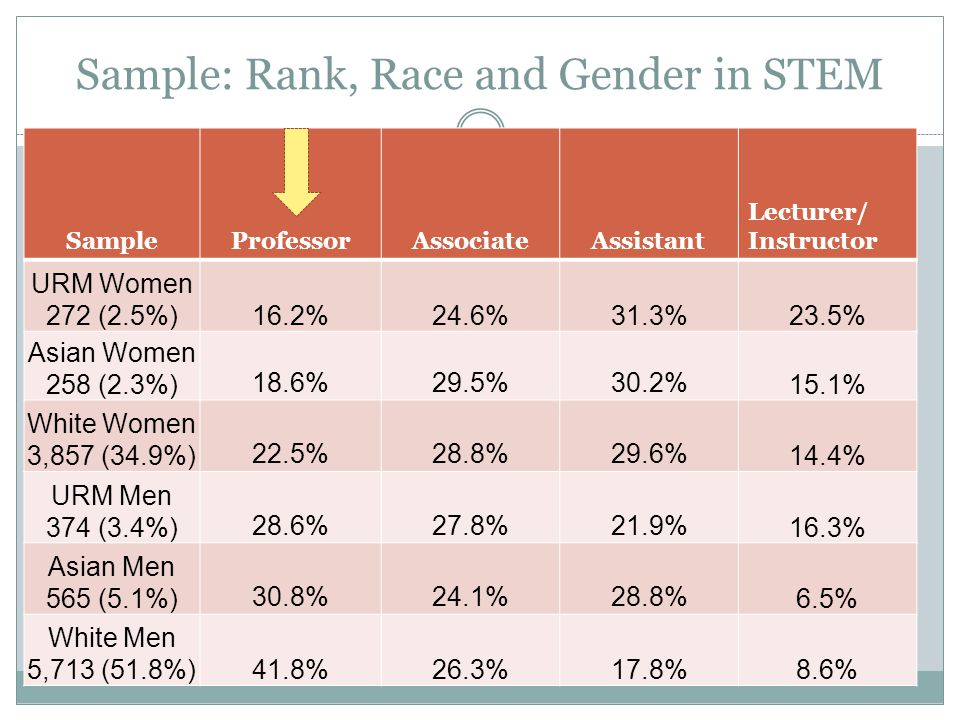 Sample: Rank, Race and Gender in STEM