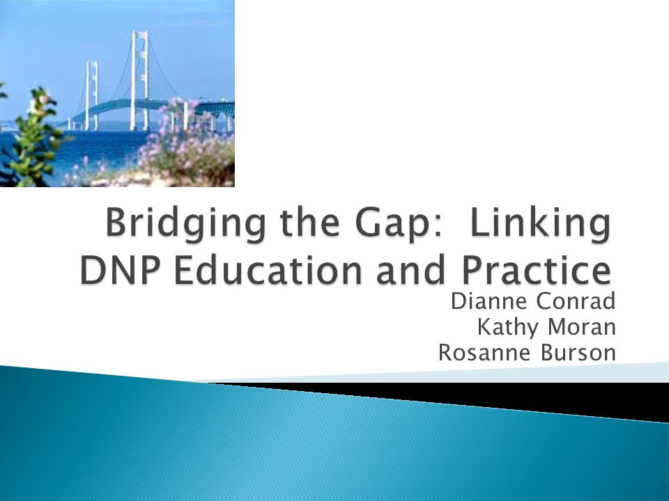 Bridging the Gap: Linking DNP Education and Practice