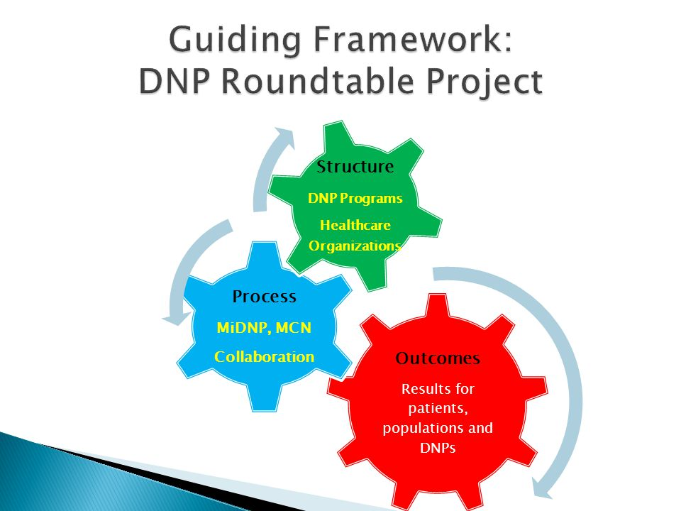 Guiding Framework: DNP Roundtable Project
