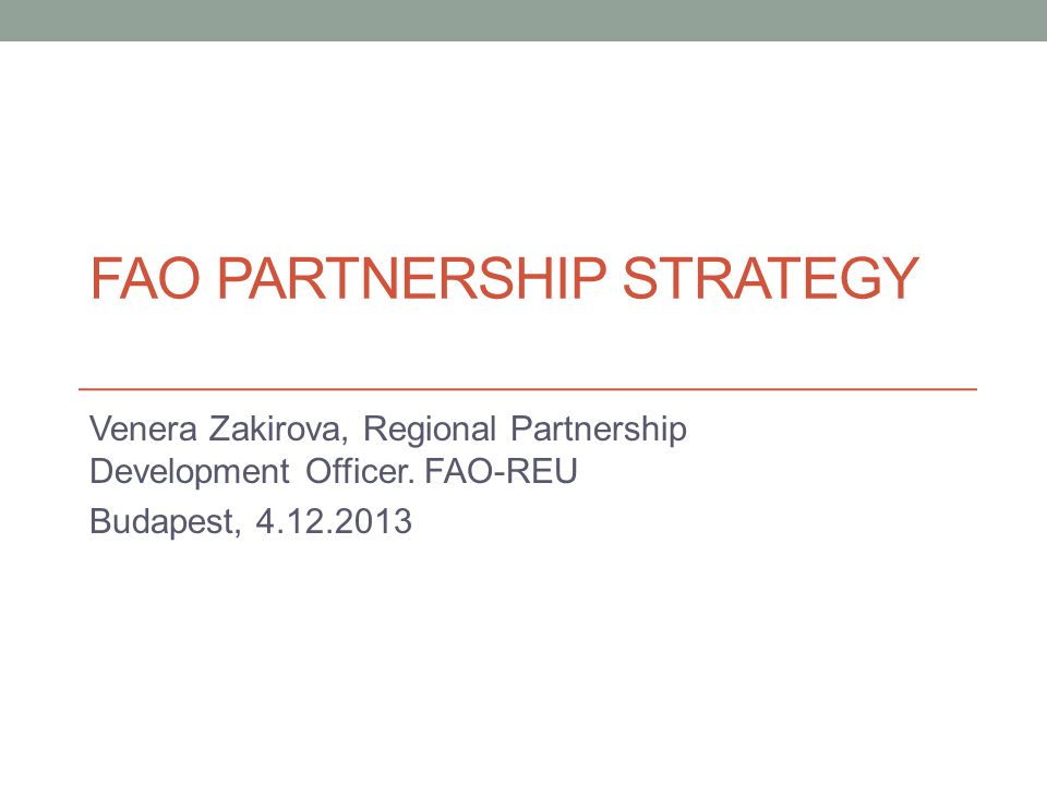 FAO Partnership Strategy