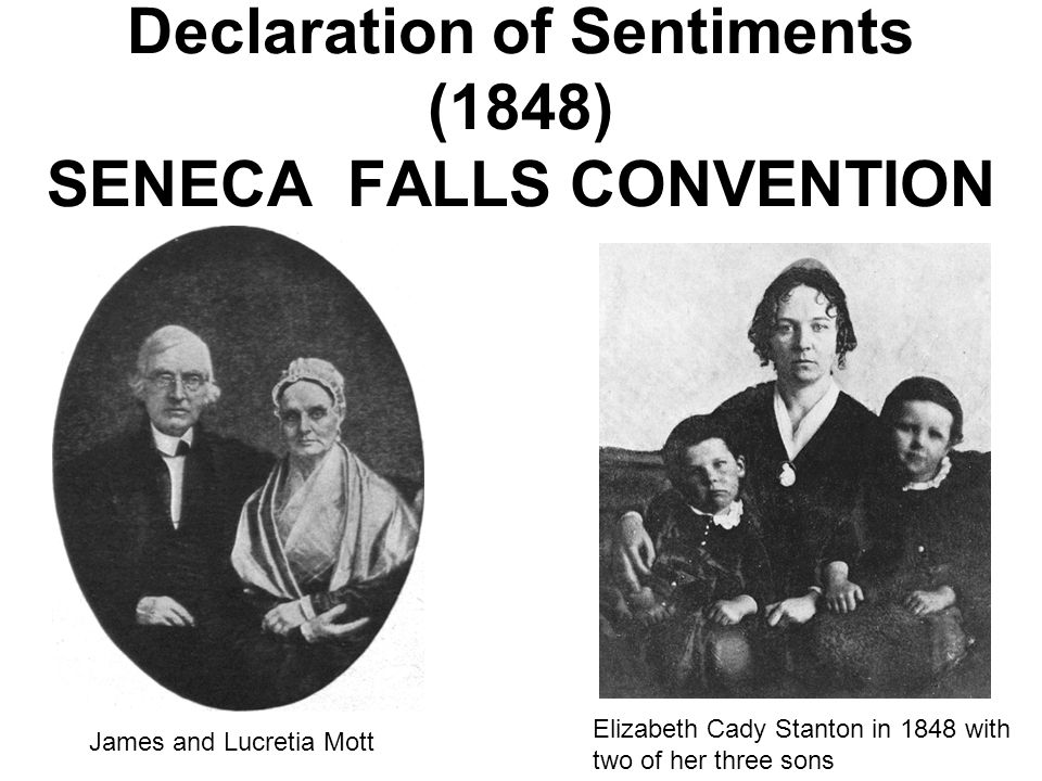 Declaration of Sentiments (1848) SENECA FALLS CONVENTION