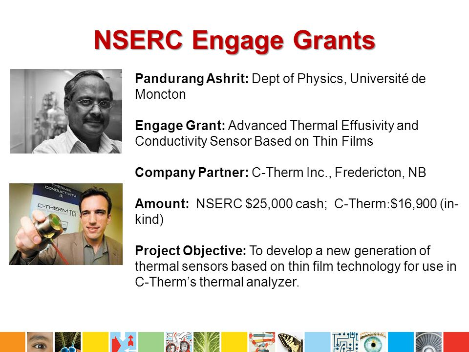 NSERC Engage Grants Pandurang Ashrit: Dept of Physics, Université de Moncton.