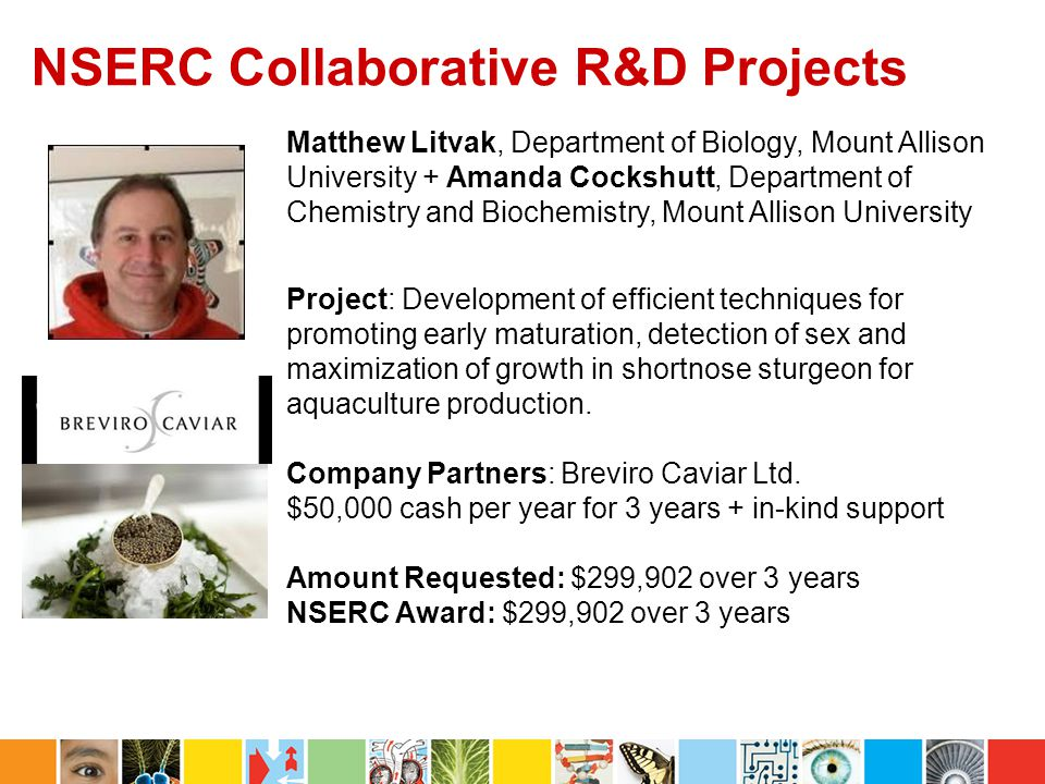 NSERC Collaborative R&D Projects