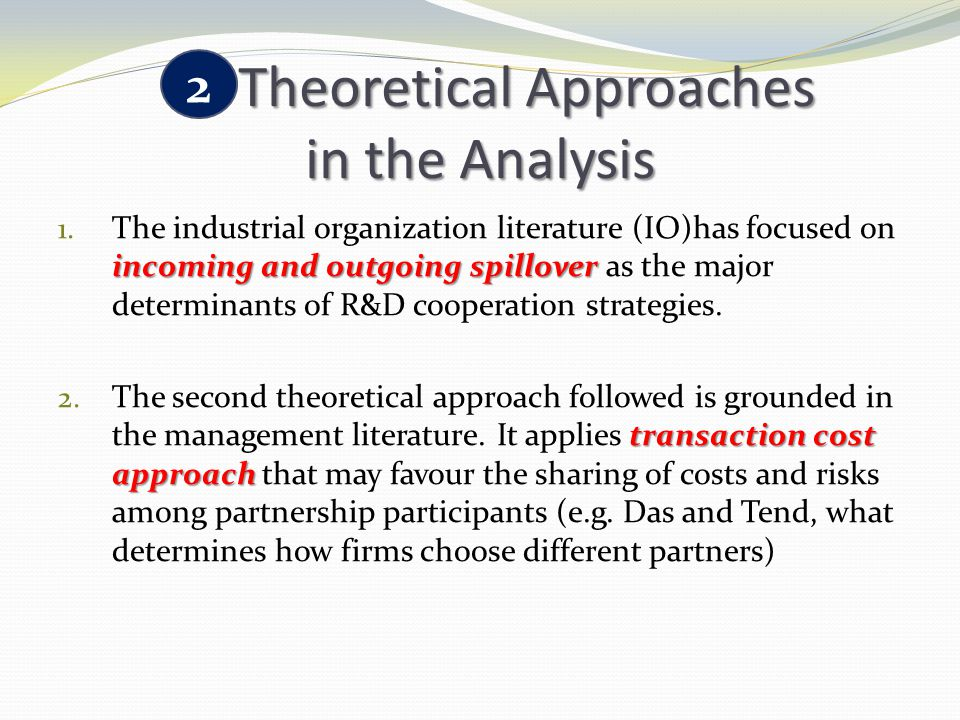 Theoretical Approaches in the Analysis