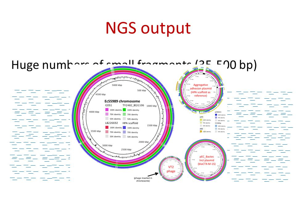 NGS output Huge numbers of small fragments (35-500 bp)
