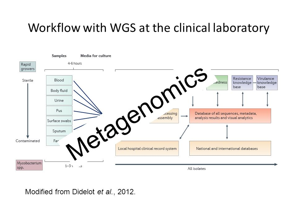 Workflow with WGS at the clinical laboratory