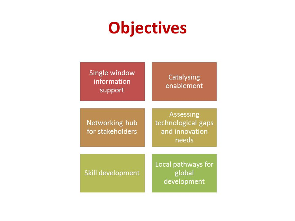 Objectives Single window information support Catalysing enablement