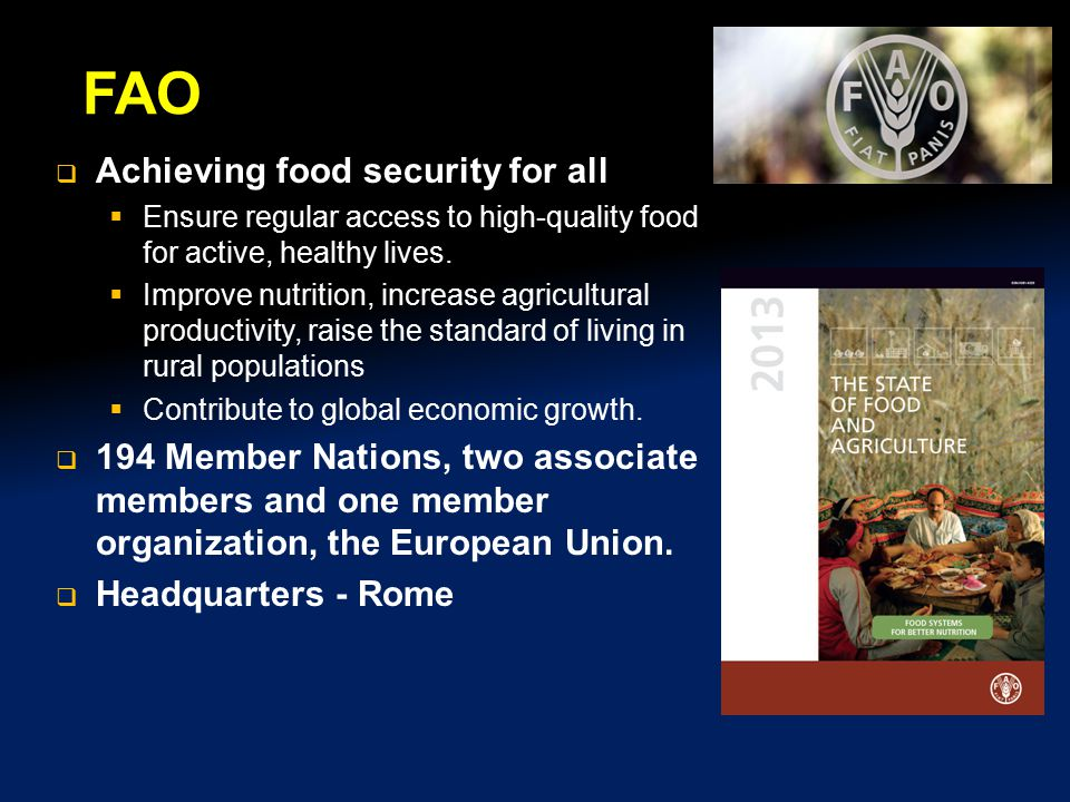 FAO Achieving food security for all