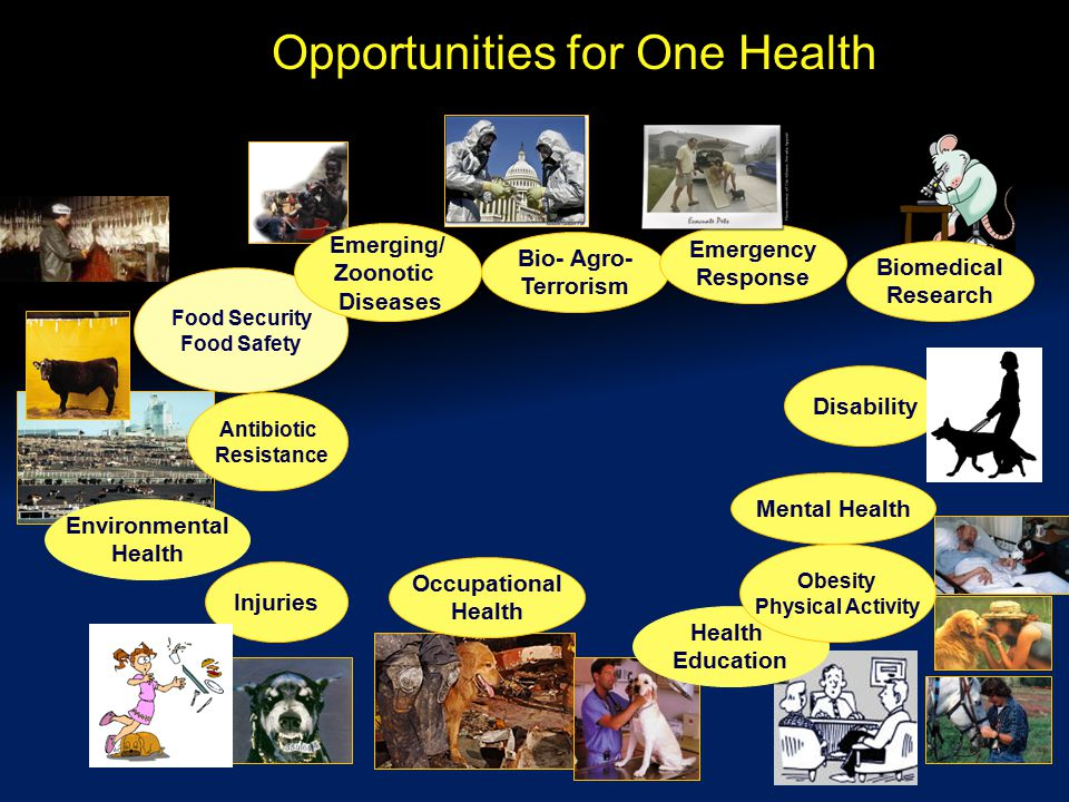 Opportunities for One Health