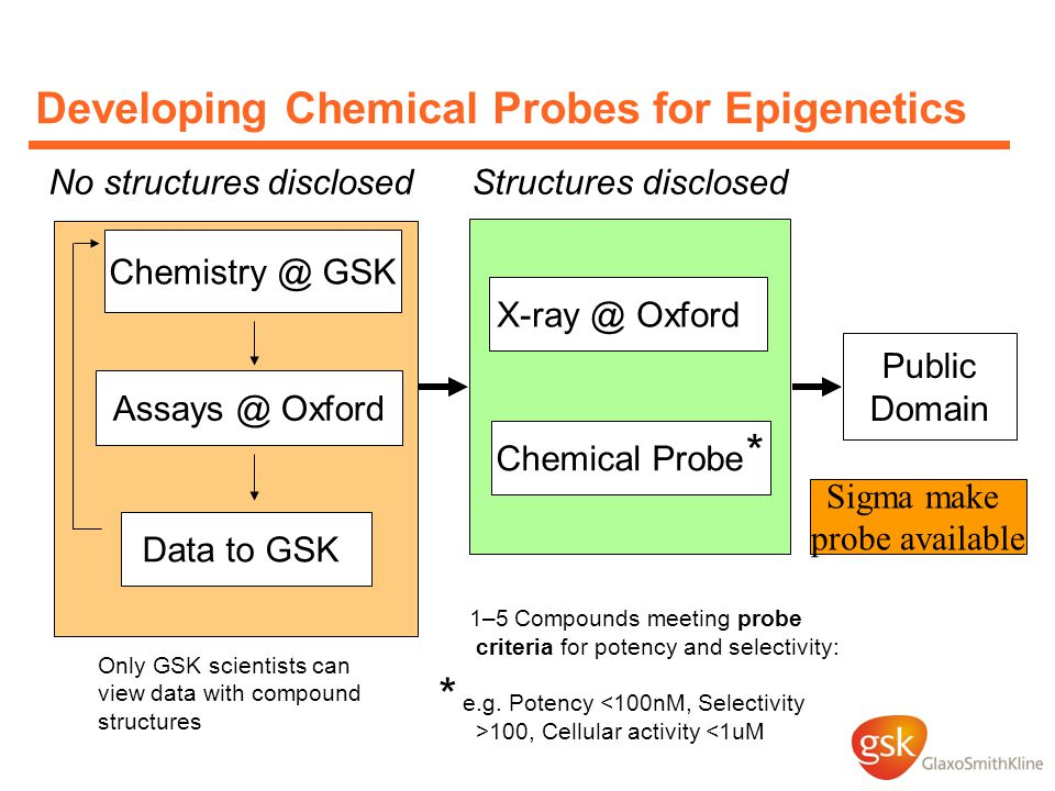 Developing Chemical Probes for Epigenetics