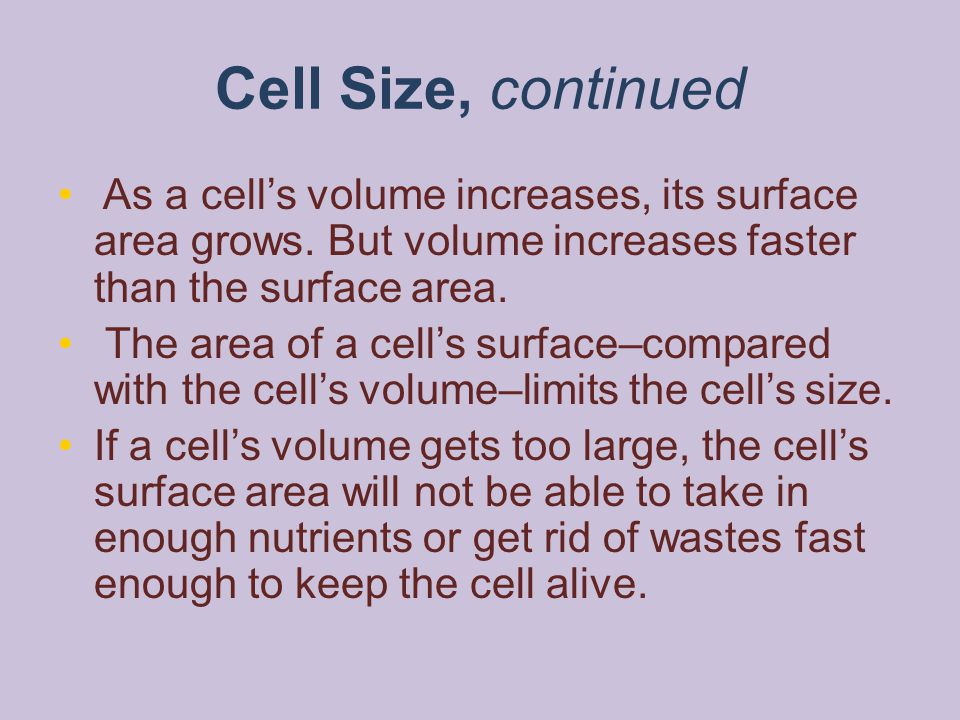 Cell Size, continued As a cell's volume increases, its surface area grows. But volume increases faster than the surface area.