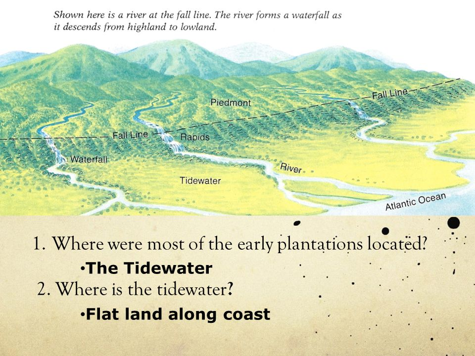 Where were most of the early plantations located