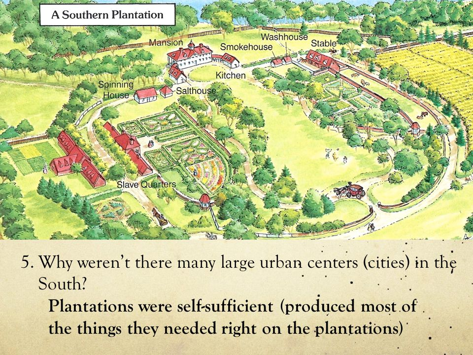 Why weren't there many large urban centers (cities) in the South