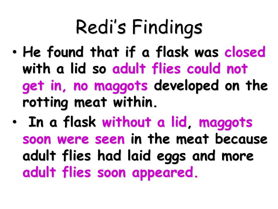 Redi's Findings He found that if a flask was closed with a lid so adult flies could not get in, no maggots developed on the rotting meat within.
