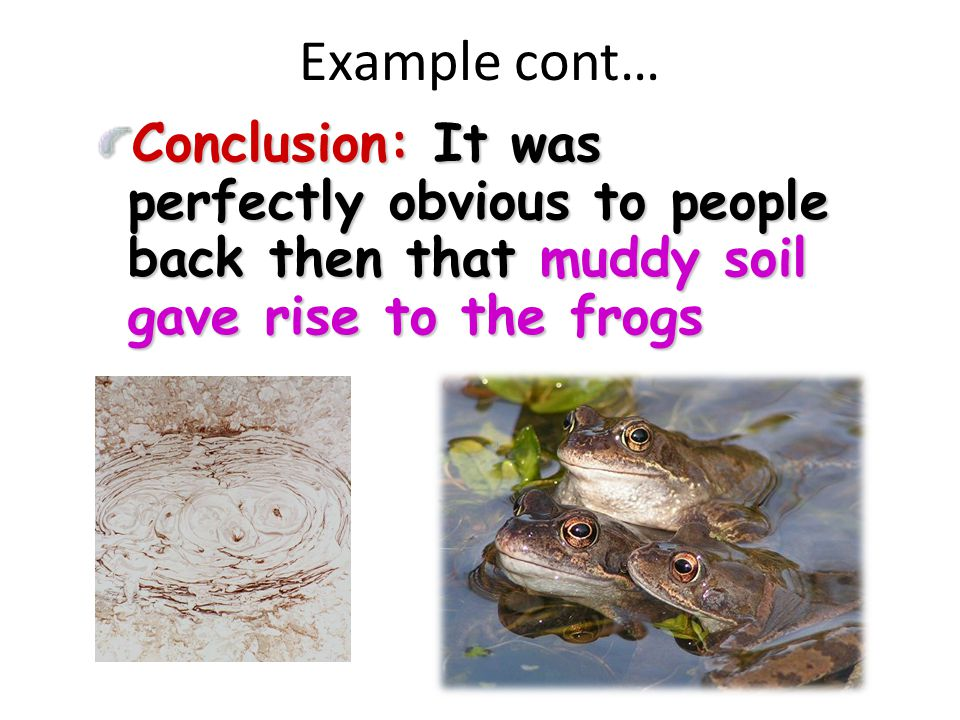 Example cont… Conclusion: It was perfectly obvious to people back then that muddy soil gave rise to the frogs.