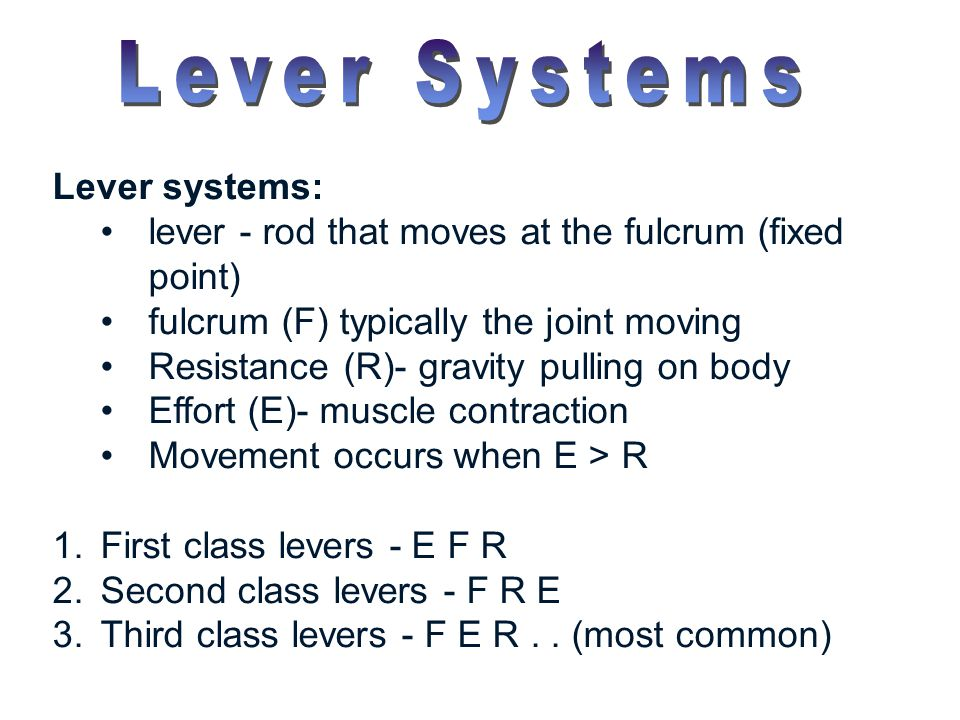 Lever Systems Lever systems: