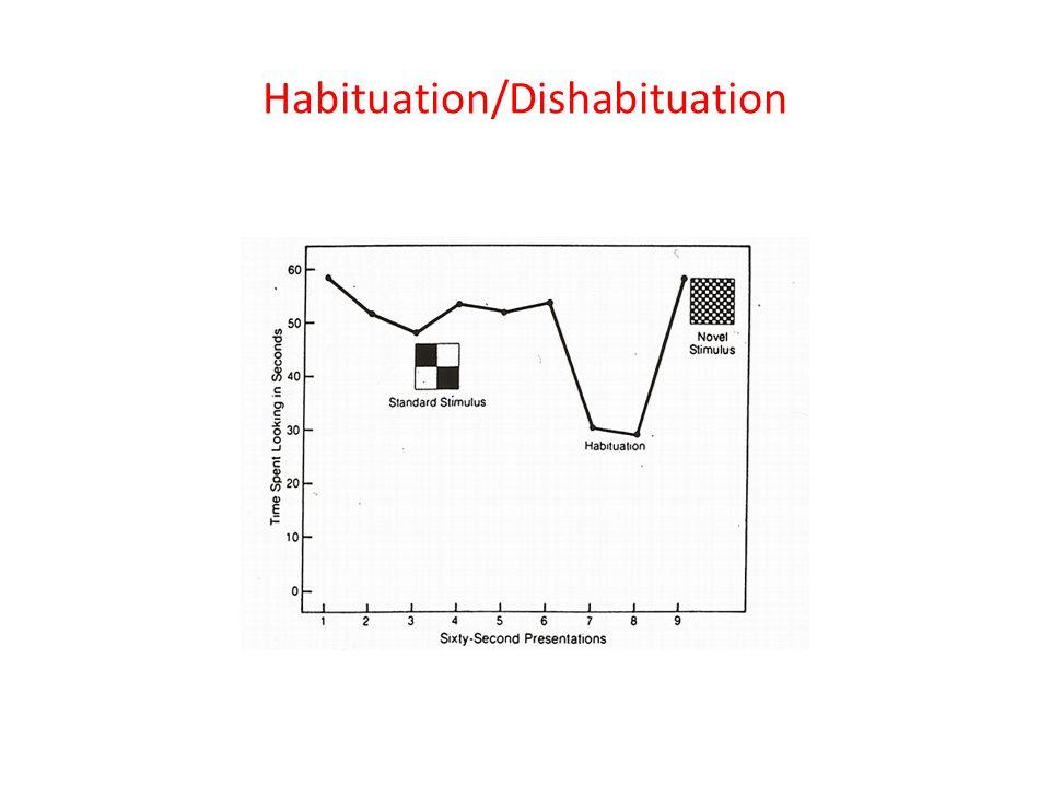 Habituation/Dishabituation