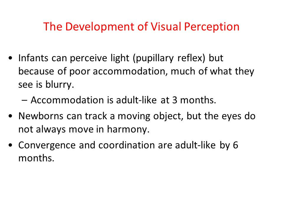 The Development of Visual Perception