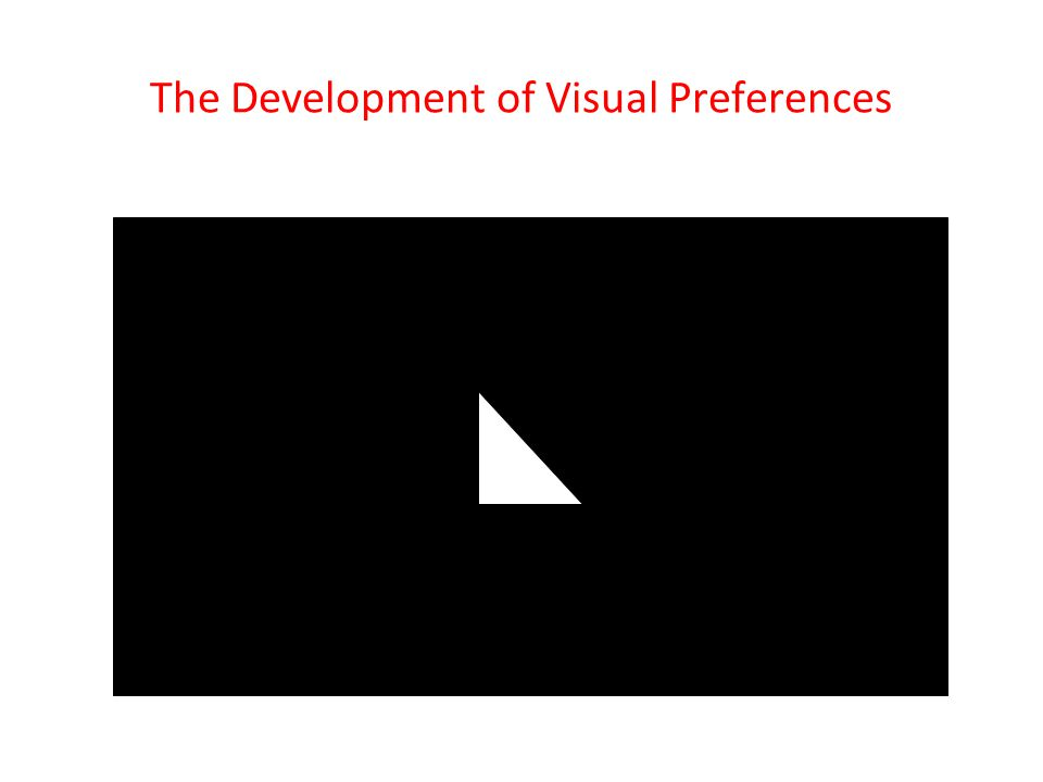 The Development of Visual Preferences