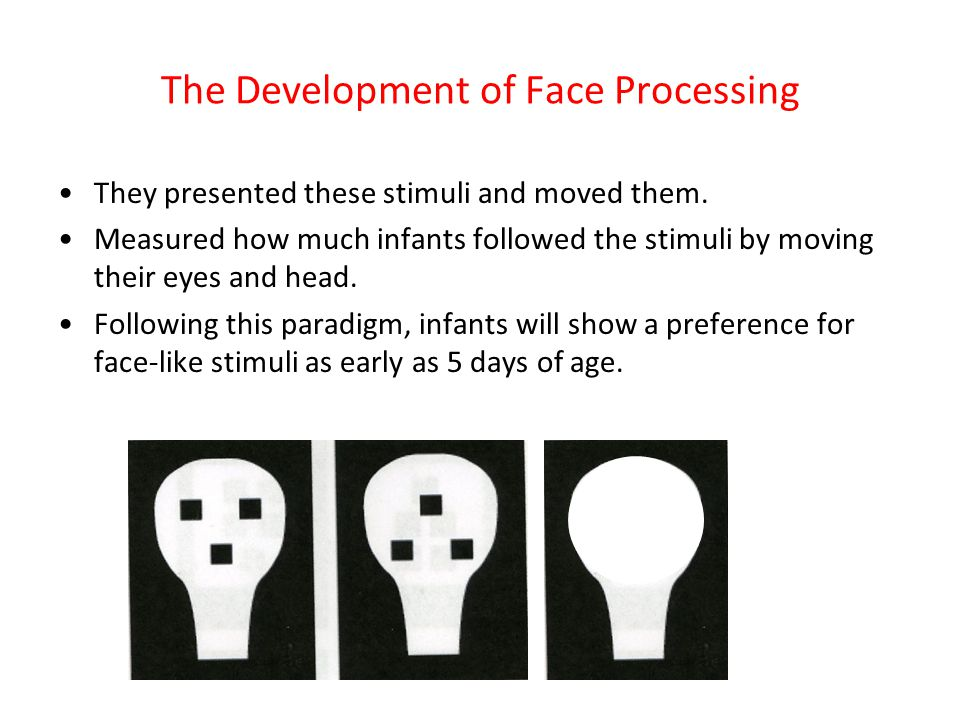 The Development of Face Processing
