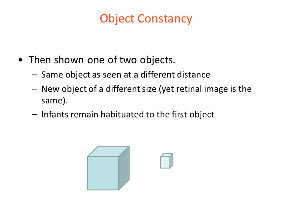 Object Constancy Then shown one of two objects.