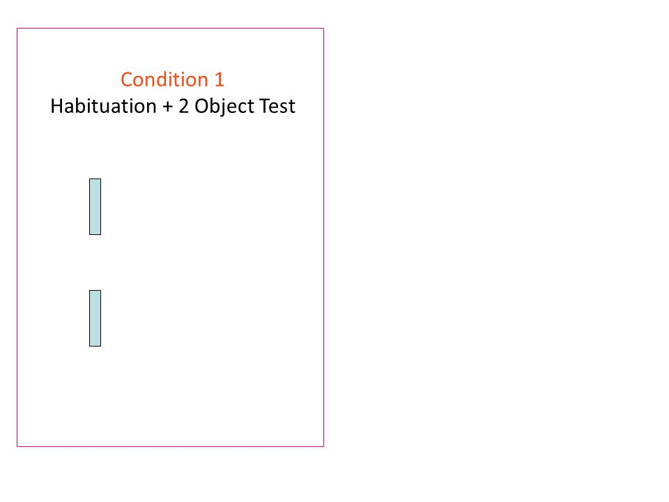 Condition 1 Habituation + 2 Object Test